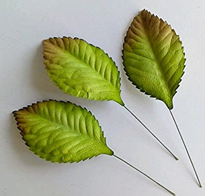 100 Green Mulberry Paper Rose Leaf Foliage Wedding w 3.5cm.