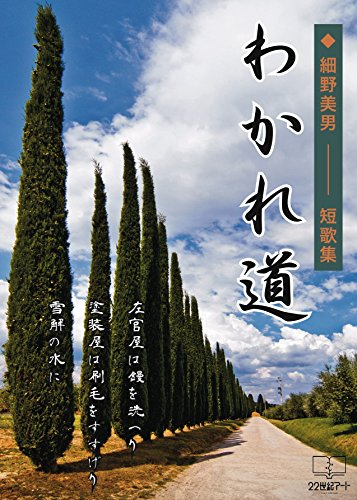 wakaremichi (22nd CENTURY ART) (Japanese Edition)