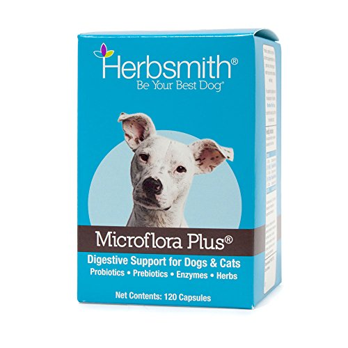 Herbsmith Microflora Plus – Dog Digestion Aid –Probiotics and Digestive Enzymes for Dogs – Prebiotic for Dogs – 120 Capsules by Herbsmith