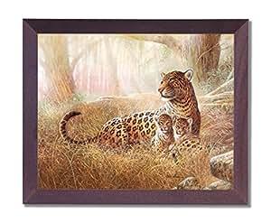 Art Prints Inc Tropical Leopard Cat Family Animal Wildlife Picture Cherry Framed Art Print É