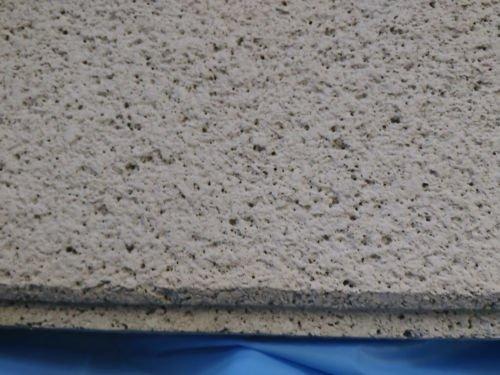 Usg Frost Acoustical Ceiling Panels Shelly Lighting