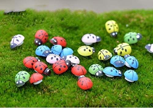 - Seed 20pcs Gardening Accessories Seven-Spotted Ladybug Succulent Plant Accessories DIY Bonsai Potted Plants Small Ornaments