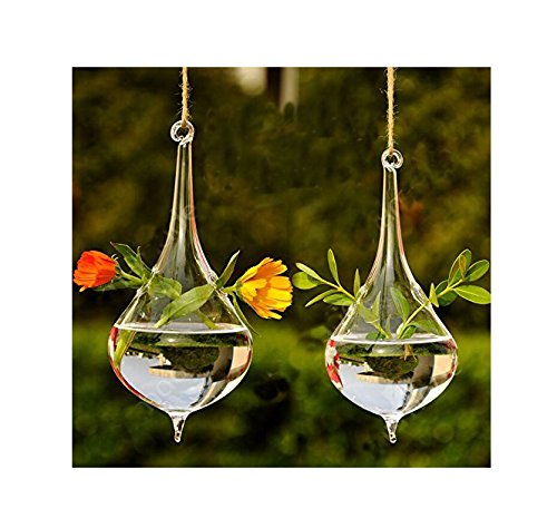 Set of 2 Beautiful Hand Blown Teardrop Shaped Hanging Glass Planters