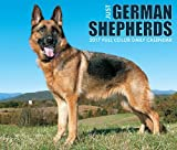 2018 Just German Shepherds Daily Desktop Box Calendar Dogs {jg} Great Holiday Gift Ideas - for mom, dad, sister, brother, grandparents, gay, lgbtq, grandchildren, grandma.