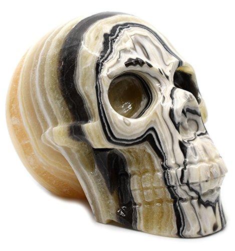 Chic Zebra Onyx Aragonite Skull Figure, 5