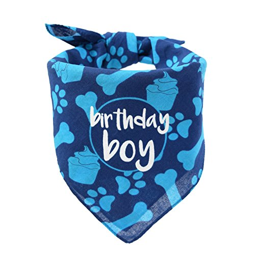 hecho Dog Birthday Bandana - Boy -