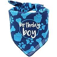 hecho Dog Birthday Bandana - Boy