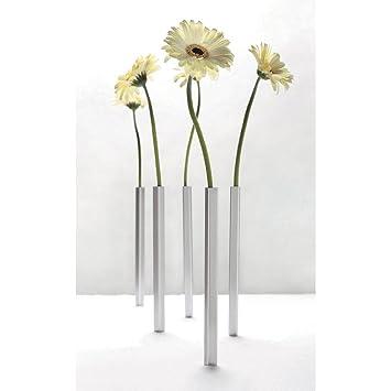 Amazon De Doiy Magnetische Vasen 5stuck Magnetic Vase