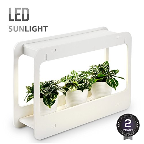 Grow Light Herb Garden - 1
