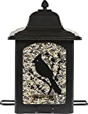 Perky-Pet 363 Birds and Berries Lantern Feeder For Sale