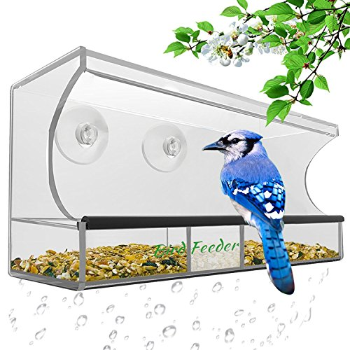w Bird House Crystal Clear Acrylic with Removable Tray, Drain Holes and 3 Heavy Duty Suction Cups with Hooks,Weatherproof Design,Squirrel Resistant,Drains Rain Water.  (Foul Pole)