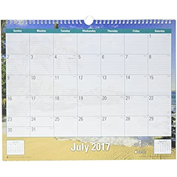 Amazon Com Blue Sky 2017 2018 Academic Year Wall