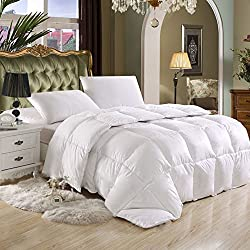 SUPER LUXURIOUS FULL / QUEEN SIZE Goose Down Alternative Comforter, 600 Thread Count 100% Egyptian Cotton Cover, 750 Fill Power, 80 Oz Fill Weight, Solid White Color