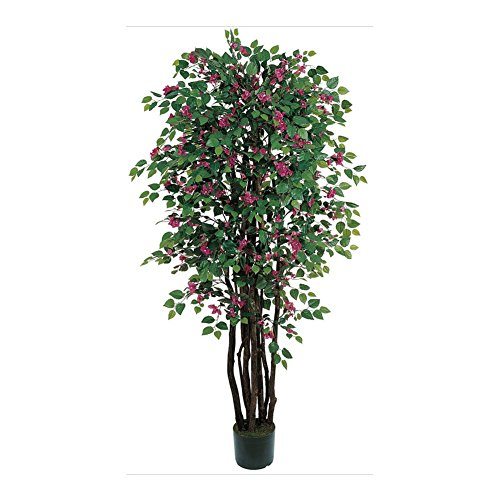 Bougainvillea Silk Tree - 6 Feet Tall - 6' Bougainvillea Silk Tree