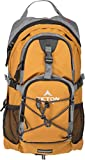 Teton Sports Oasis 1100 2 Liter Hydration Backpack; Day Pack Perfect for Hiking, Running, Cycling, Biking, Climbing, and Hunting; 2 L Water Bladder Included; Sewn-in Rain Cover; Orange