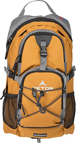 TETON Sports Oasis 1100 Hydration Pack | Free 2-Liter Hydration Bladder | Backpack design great for Hiking, Running, Cycling, and Climbing | Orange (Best Hiking Backpack Under 100)