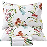 Queen's House Floral Sheets Queen Size Sets-C