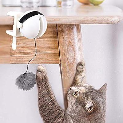SUT Juguete para Gatos, Gato Eléctrico para Gatos/con Bola De Elevación, Adecuado para Interactuar con Gatos,White: Amazon.es: Hogar