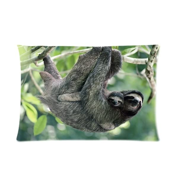 Three Toed Sloth And Baby Pillowcases Custom Pillow Case Cushion Cover 20 X 30 Inch Two Sides -