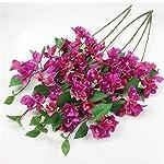 jiumengya-10pcs-Silk-Bougainvillea-Glabra-Climbing-Bougainvillea-spectabilis-Artificial-Bougainvillea-Tree-Branches-315-six-Colors-for-Wedding-Centerpieces-deep-Pink-Fuchsia