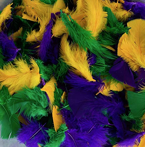 Turkey Plumage Mardi Gras Craft Feather Mix 3-5