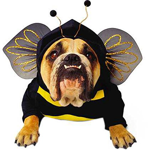 Dog Bumblebee Costumes (Bumble Bee Dog Costume Size:)