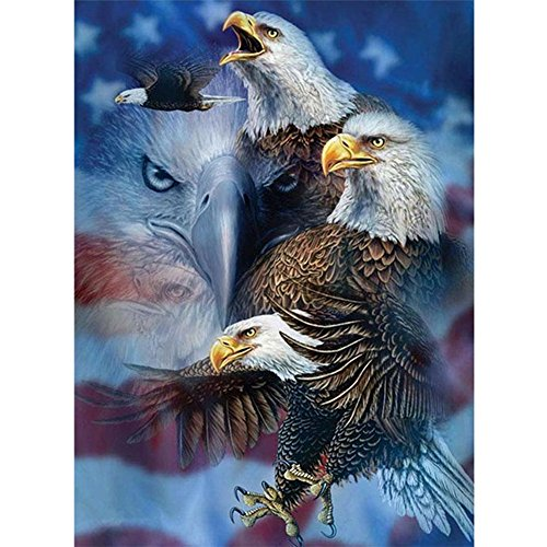 Mikilon 5D Embroidery Paintings, Bald Eagle USA Crystal Rhinestone Diamond Picture Poster for Home Decoration, 12x16