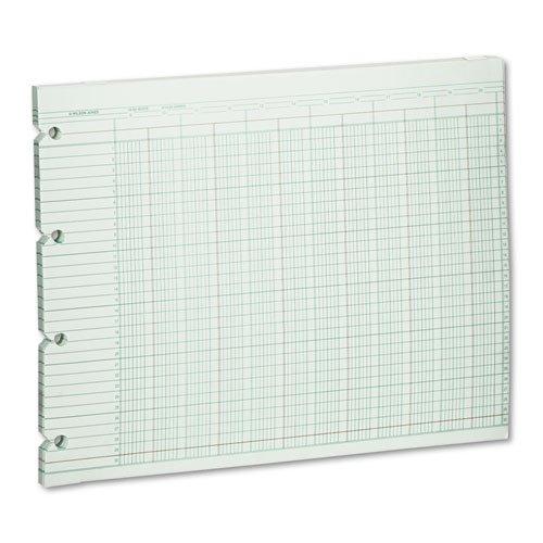 Wilson Jones - Accounting Sheets, 20 Column, 9-1/4 x 11-7/8, 100 Loose Sheets/Pack, Green G10-20 (DMi PK