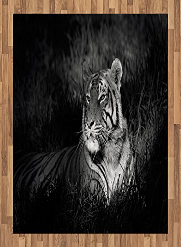 Black and White Area Rug by Ambesonne, Bengal Tiger Lying in the Grass Africa Savannah Monochrome Image Print, Flat Woven Accent Rug for Living Room Bedroom Dining Room, 5.2 x 7.5 FT, Black White by Ambesonne