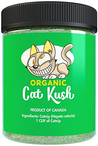 Organic Catnip by Cat Kush, Safe Premium Blend Perfect for Cats, Instilled with Maximized Potency your Kitty is Guaranteed to Go Crazy for! (1 Cup)