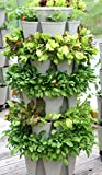 HUGE GreenStalk 5 Tier Vertical Garden Planter with Patented Internal Watering System Great for Growing a Variety of Strawberries, Vegetables, Herbs & Flowers on a Balcony or Deck (Stunning Stone)