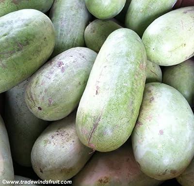 Watermelon Seed Charleston Gray By Stonysoil Seed Company