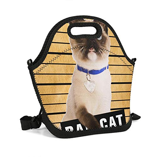 rrr Siamese cat Mug Lunch Bag Large Space Thermos Cloth Tote Bag Outdoor Box