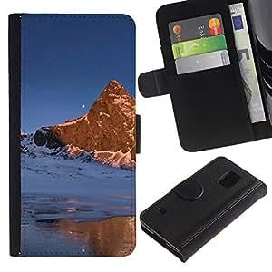 LASTONE PHONE CASE / Lujo Billetera de Cuero Caso del tirón Titular de la tarjeta Flip Carcasa Funda para Samsung Galaxy S5 V SM-G900 / Nature Beautiful Forrest Green 169