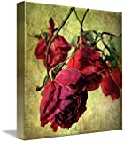 Gallery-Wrapped Canvas entitled 'Vintage Rose'. Featured on the Homepage 10/12/09. Multiple sizes available. Primary colors within this image include: Violet, Brown, Orange, Grey. Made in the USA. Satisfaction guaranteed. Inks used are latex-based an...