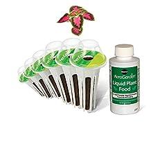 Miracle-Gro AeroGarden Colorful Coleus Seed Pod Kit (6-Pod)