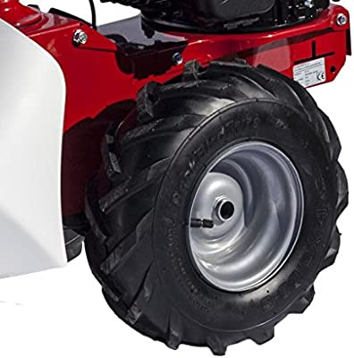 Segadora motorizada de gasolina Euro-Expos 5/CV, motor de 4 velocidades, longitud de corte: 870/mm