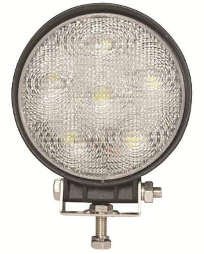 Panacea Led Lights in US - 3