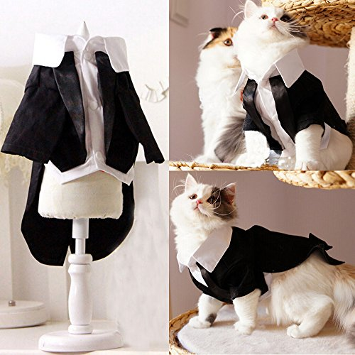 i'Pet® Handsome Prince Cat Bridegroom Wedding Tuxedo Faux Twinset Design Small Boy Dog Formal Attire Doggy Party Wear Puppy Birthday Outfit Doggie Photo Apparel with Buttons Holiday Fabric Clothes Halloween Classics Collection Costume (Black Tuxedo, X-Large)