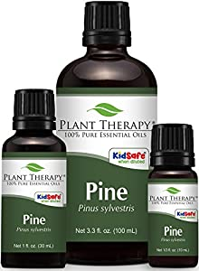 Pine Essential Oil. 100% Pure, Undiluted, Therapeutic Grade.