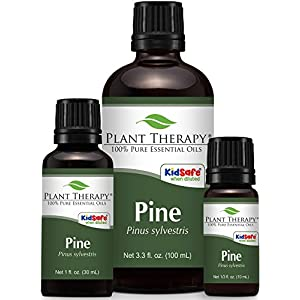 Plant Therapy Pine Scots Essential Oil 100% Pure, Undiluted, Therapeutic Grade