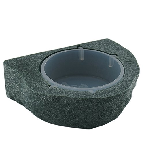 51dEqpExvsL - Reptile Bowl Gecko Ledge Magnetic Gecko Feeder Small-Green