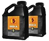 Heavy 16 Bud A and B Set - Quart, 1 L