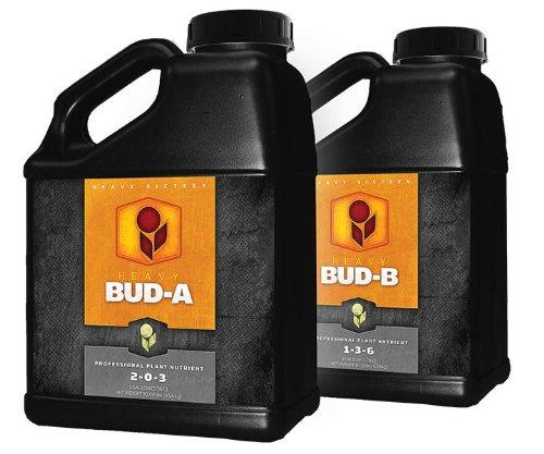 51dEsuXlvnL Heavy 16 BUD A & B Set - Gallon (4 Liter)