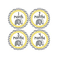 Months in Motion 382 Monthly Baby Stickers Gender Neutral Elephants Months 1-...