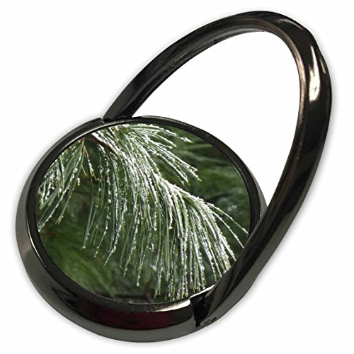 3dRose Renderly Yours Winter And Christmas - Pine Bough With Snow - Phone Ring (phr_185396_1) (Christmas Pine Boughs)