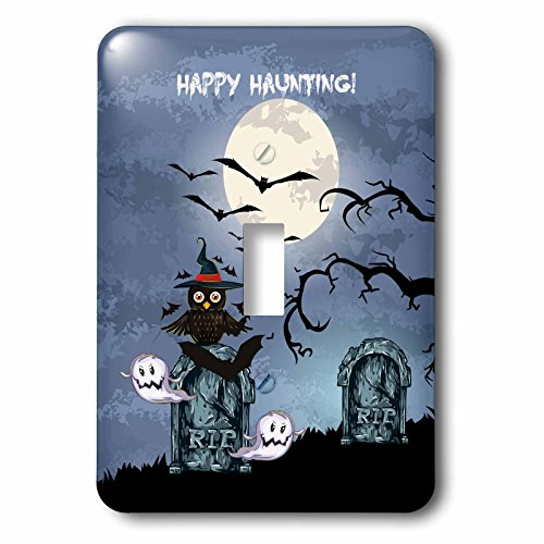 3dRose lsp_129774_1 Spooky Graveyard Cemetary Happy Haunting Halloween Scene with Full Moon Bats Ghosts Spooky Owl Rip Light Switch Cover -
