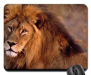 African lion closeup Mouse Pad, Mousepad (Cats Mouse Pad)