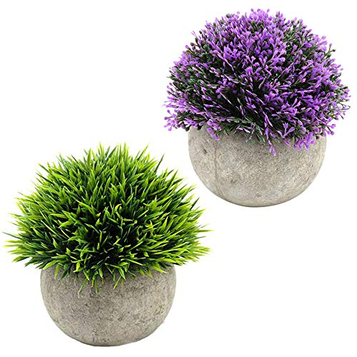 - baoxinyue 2 Pcs Artificial Plastic Plants Potted Plants Green and Purple Plants Shrub Fake Plants Mini SizeHome Decor (C)