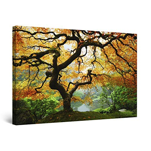Startonight Wall Art Canvas Maple Tree, Nature USA Framed Wall Art 24' x 36'
